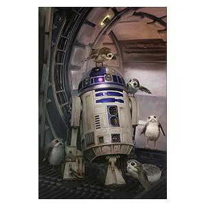 Хардпостер (на твёрдой основе) Star Wars. Размер: 30 х 45 см
